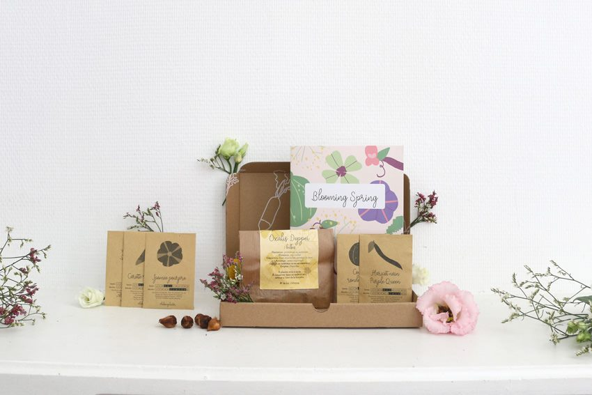 la box a planter courgettes2