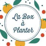 la box a planter logo