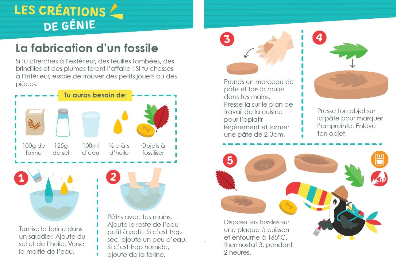 La recette des fossiles par toucanBox