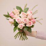 Bloom & wild roses